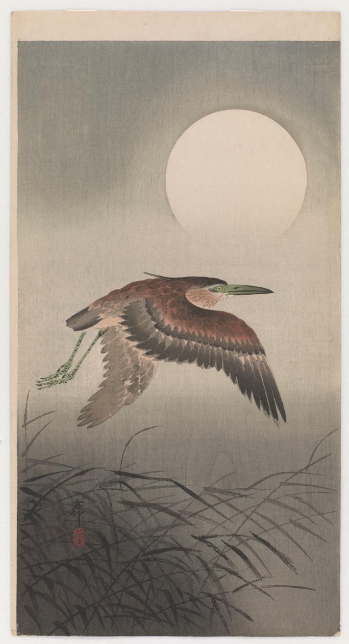 koson-heron-1900s