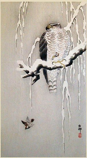 koson-goshawk-and-sparrows